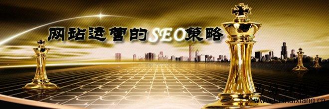 网站运营的八大SEO策略