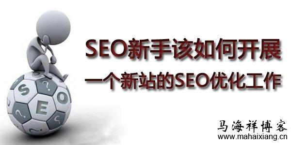 SEO新手该如何开展一个新站的SEO优化工作