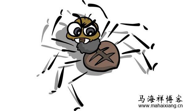 抓取网站的搜索引擎蜘蛛是不是越多